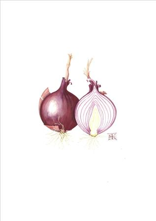 One and a half Red onions £85